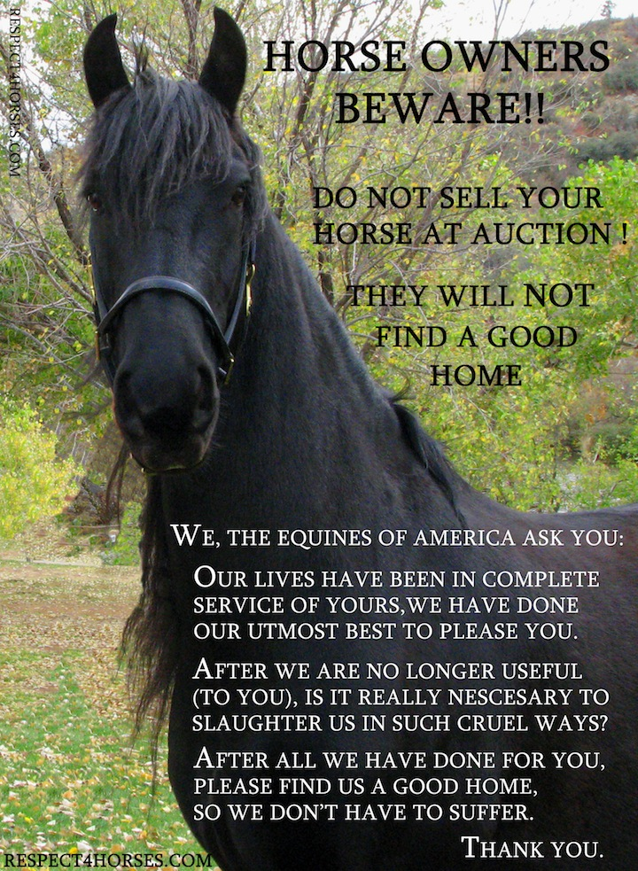 Horse Owners Beware poster